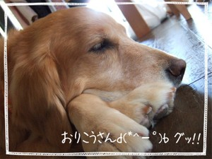 2006_0508marron0196
