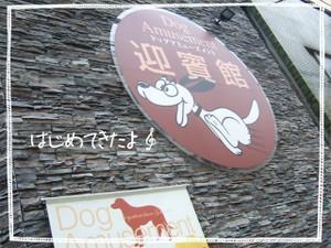 2006_0606marron0027
