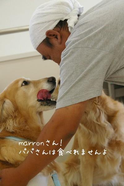 2007_0612marron0153