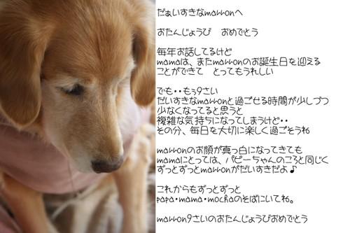 Img_0304_2